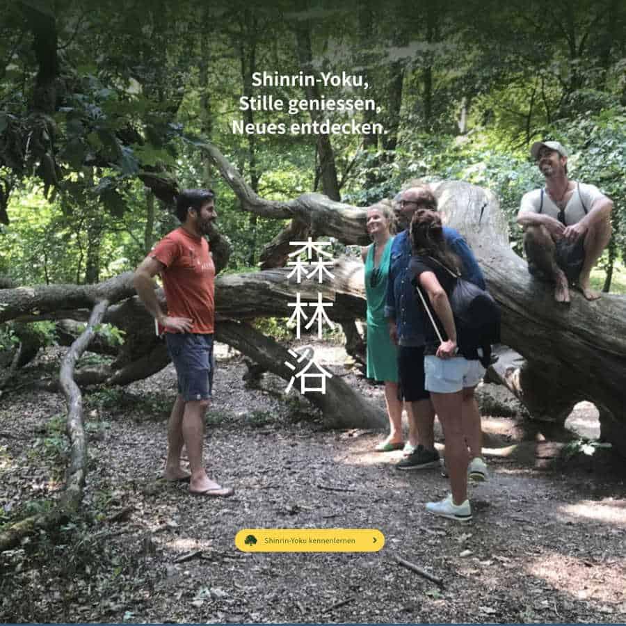 Eine Gruppe von Personen beim Waldbaden mit Robinwoods